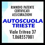 Scuola Guida, Rinnovo Patente guida